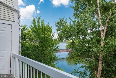 Ashburn Condo For Sale: 20596 Cornstalk Terrace #301