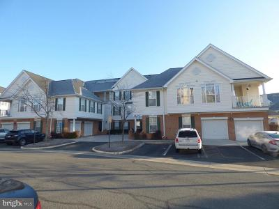 Chantilly Rental For Rent: 25300 Lake Mist Square #203