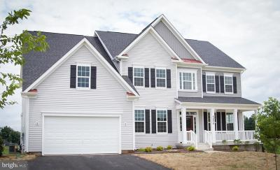 Leesburg Single Family Home For Sale: Amy's Meadow Place