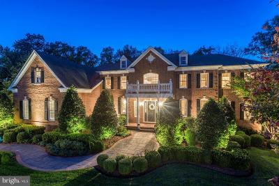 Ashburn Rental For Rent: 20231 Laurel Creek Way