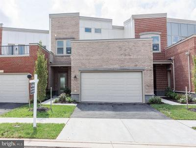 Ashburn Townhouse For Sale: 5 Cumulus Terrace