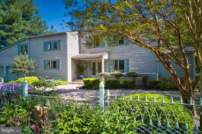 Loudoun County Single Family Home For Sale: 23009 Cobb House Road