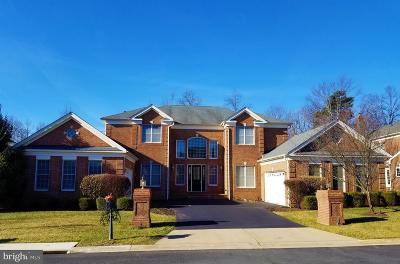 Ashburn Single Family Home For Sale: 20137 Black Diamond Place