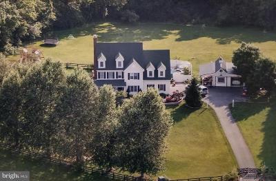 Loudoun County Single Family Home For Sale: 17969 Battle Peak Court