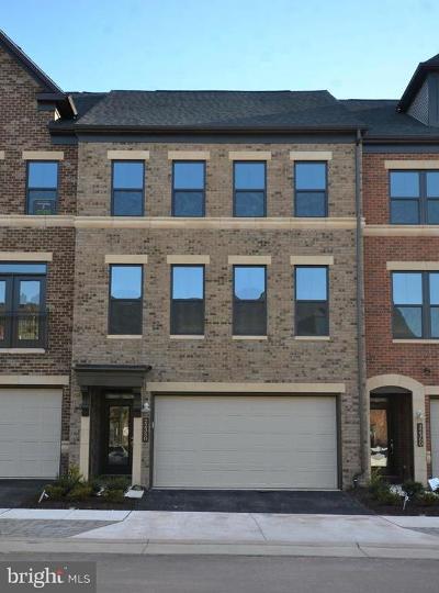 Ashburn Rental For Rent: 22358 Exe Square