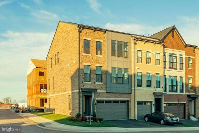 Brambleton Townhouse For Sale: 42280 Impervious Terrace