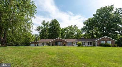 Loudoun County Single Family Home For Sale: 20269 Trappe Road