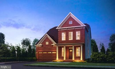 Ashburn Single Family Home For Sale: 1 Shooting Star Place