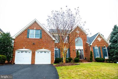 Ashburn Single Family Home For Sale: 43397 Ballantine Place