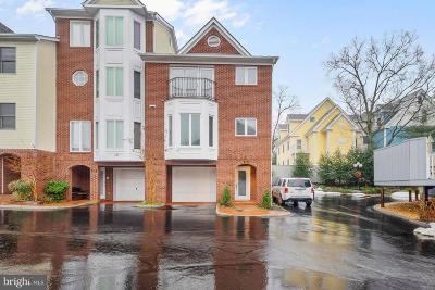 Leesburg Rental For Rent: 106 Chesterfield Place SW