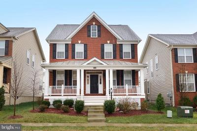 Ashburn Single Family Home For Sale: 43029 Ashley Heights Circle