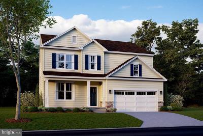 Leesburg Single Family Home For Sale: 345 Dizerega Court