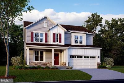 Leesburg Single Family Home For Sale: 456 Dizerega Court