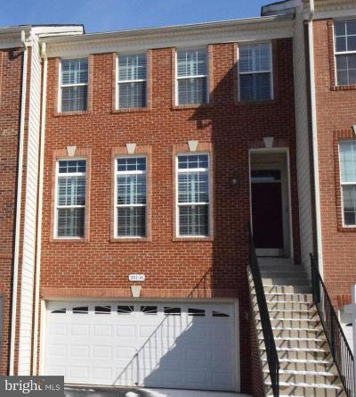 Ashburn Townhouse For Sale: 20156 Mare Terrace