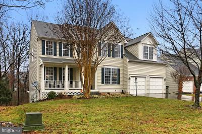 Broadlands, Broadlands South Single Family Home For Sale: 42826 Bluestone Court