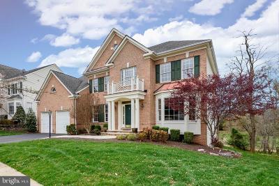 Lansdowne On The Potomac Single Family Home For Sale: 19030 Coton Farm Court