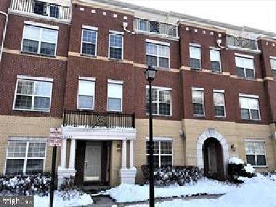 Brambleton Rental For Rent: 42603 Hollyhock Terrace