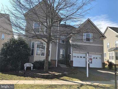 Ashburn Single Family Home For Sale: 22768 Highcrest Circle