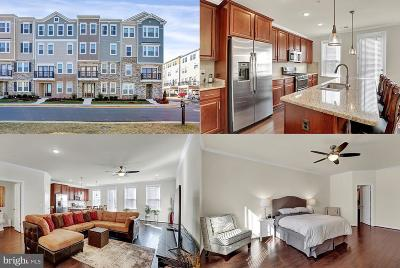 Aldie Condo For Sale: 42045 Berkley Hill Terrace