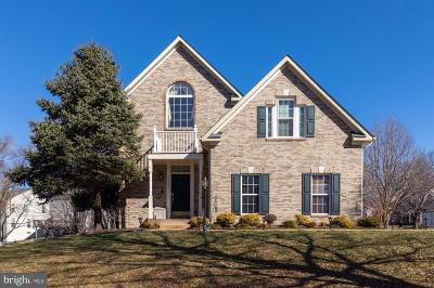 Broadlands Single Family Home For Sale: 21533 Thornhill Place
