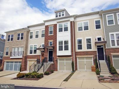 Brambleton Rental For Rent: 42672 New Dawn Terrace
