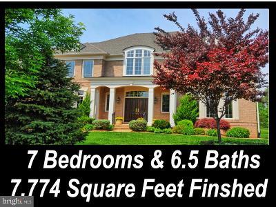 Ashburn Single Family Home For Sale: 23077 Oglethorpe Court
