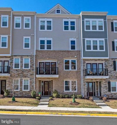 Aldie Condo For Sale: 24487 Amherst Forest Terrace