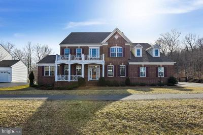 Leesburg Single Family Home For Sale: 15774 Dorneywood Drive