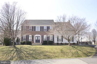 Lovettsville Single Family Home For Sale: 40945 Sycamore Creek Lane