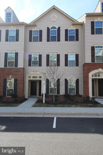 Aldie Condo For Sale: 42273 Tackroom Terrace