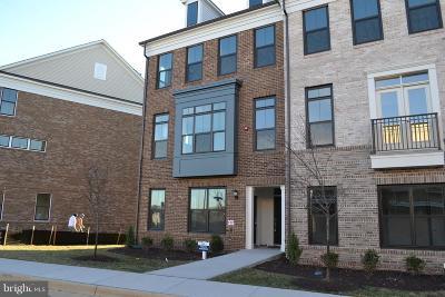 Ashburn Rental For Rent: 22559 Amendola Terrace