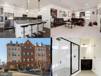 Aldie Condo For Sale: 26021 Braided Mane Terrace