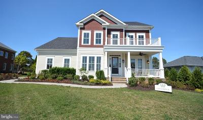 Aldie Single Family Home For Sale: Cullen Run Place