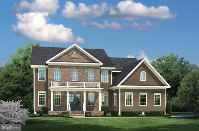 Aldie Single Family Home For Sale: Willow Walk Court #3