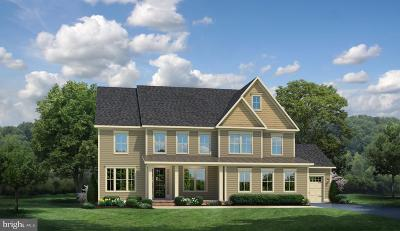 Aldie Single Family Home For Sale: Willow Walk Court #4