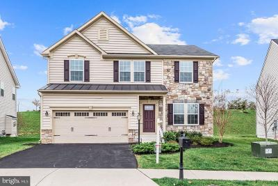 Aldie Single Family Home Under Contract: 41652 Truly Circle