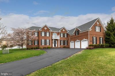 Belmont Country Club Single Family Home For Sale: 20120 Black Diamond Place