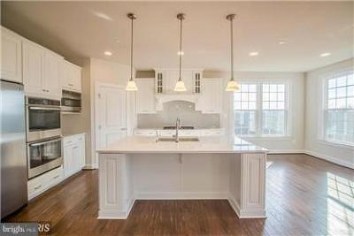 Aldie Single Family Home For Sale: Silver Linden Court