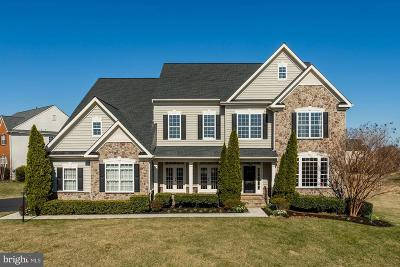 Ashburn Single Family Home Active Under Contract: 22492 Terra Rosa Place