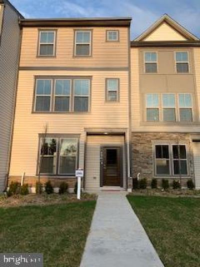 Leesburg Rental For Rent: 106 NE Tolocka Terrace NE