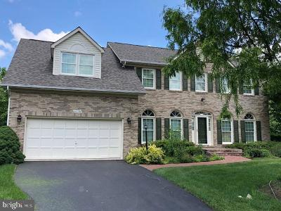 Ashburn Single Family Home For Sale: 20780 Snowpine Place