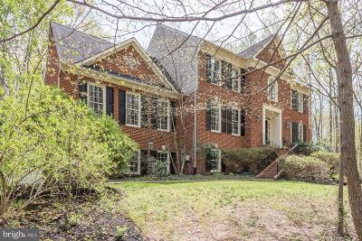 Leesburg Single Family Home For Sale: 40885 Forest Glen Drive