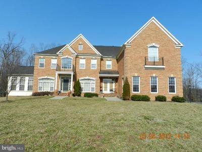 Ashburn Rental For Rent: 22454 Pine Top Court