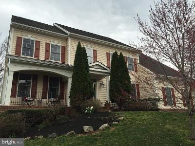 Leesburg Single Family Home For Sale: 43083 Rocky Ridge Court