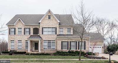 Leesburg Single Family Home For Sale: 18788 Ridgeback Court
