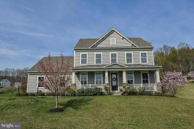 Leesburg Single Family Home For Sale: 15627 Avebury Manor Place