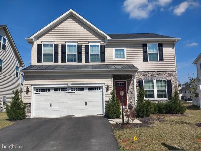 Aldie Single Family Home For Sale: 41430 Carriage Horse Drive