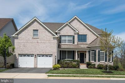 Ashburn Single Family Home For Sale: 43341 Barnstead Drive