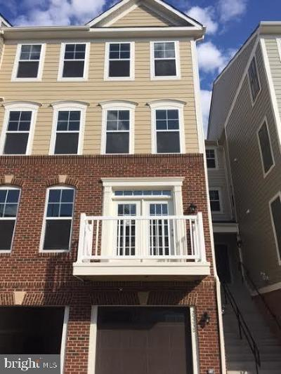 Chantilly Rental For Rent: 25238 Orchard View Terrace