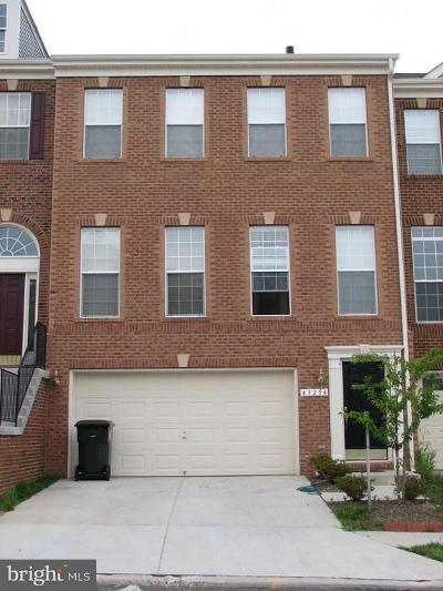Ashburn Rental For Rent: 43254 Goosefoot Square